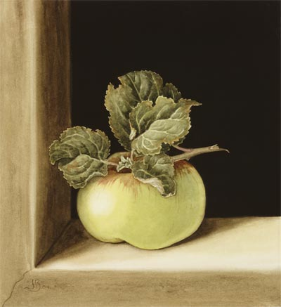 'Still Life with Apple', Watercolour, Jenny Barron